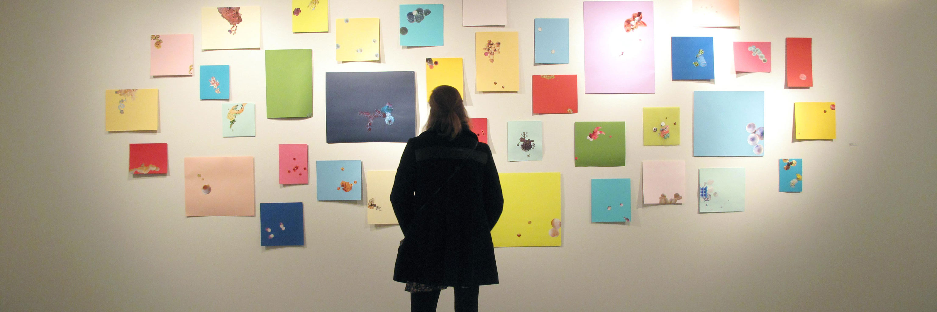 woman looking at pictures posted to a wall